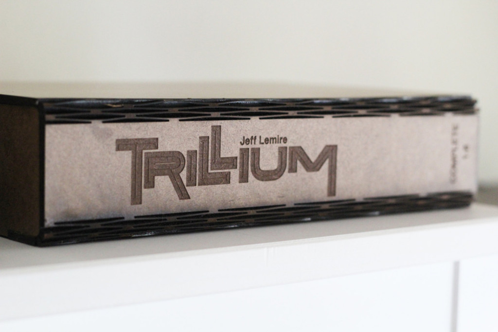 Trillium display box 2